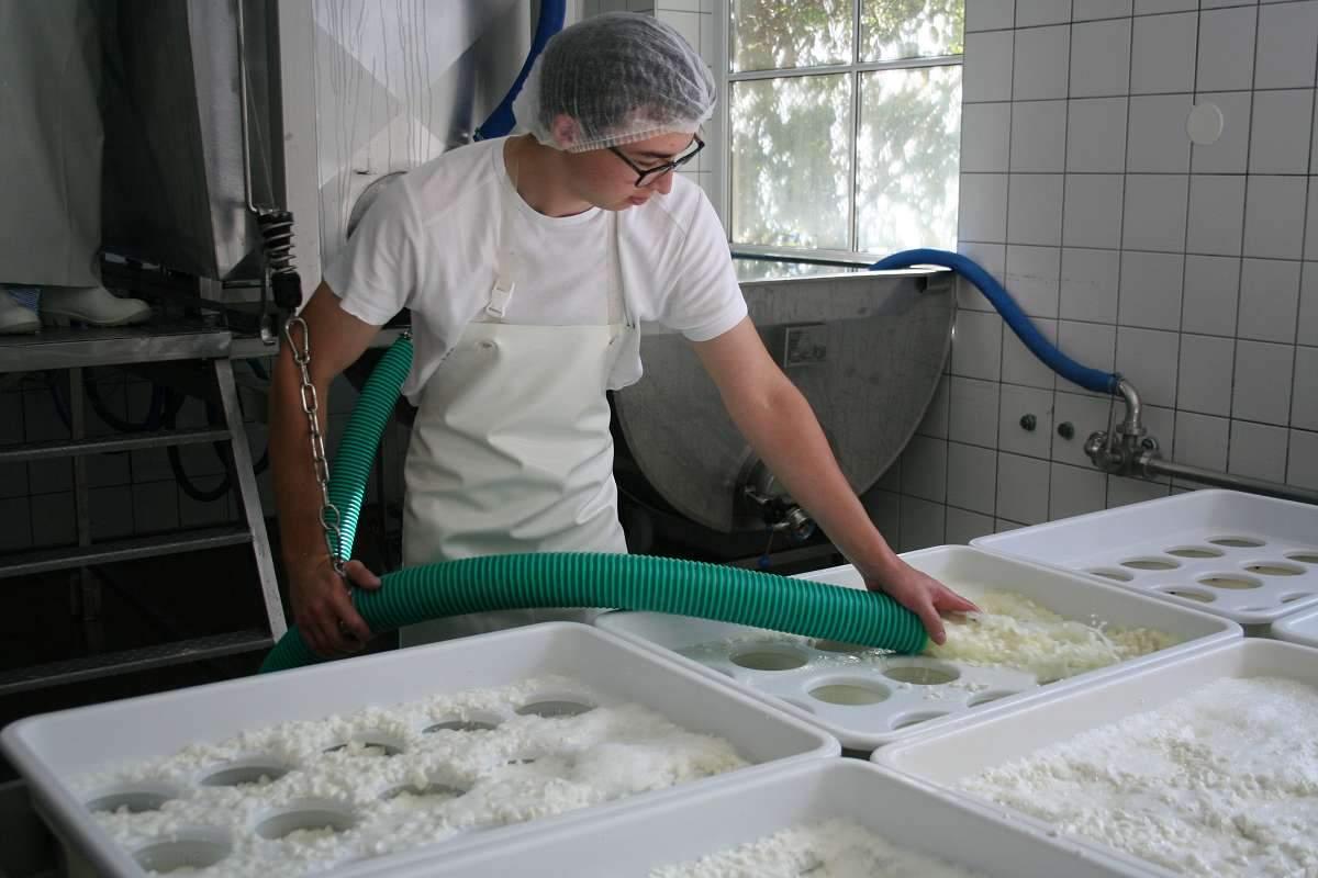 Käserei Produktion