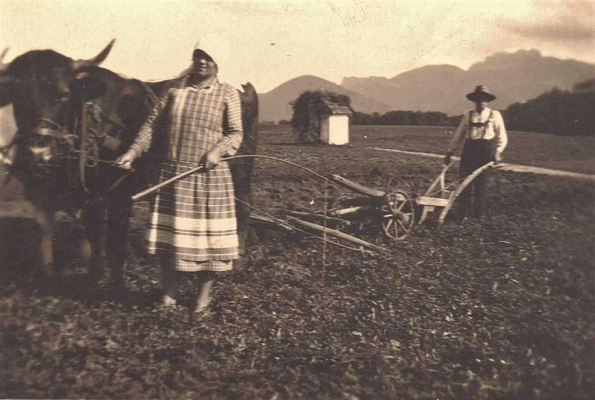 Altes BIld von Bauern auf dem Feld